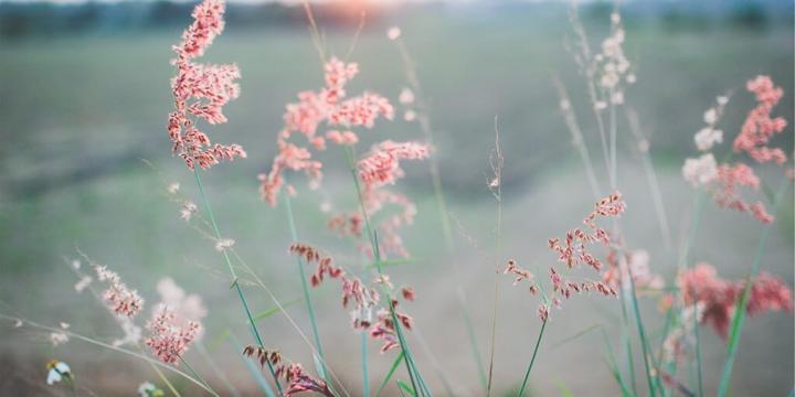 Fibromyalgia and Isolation